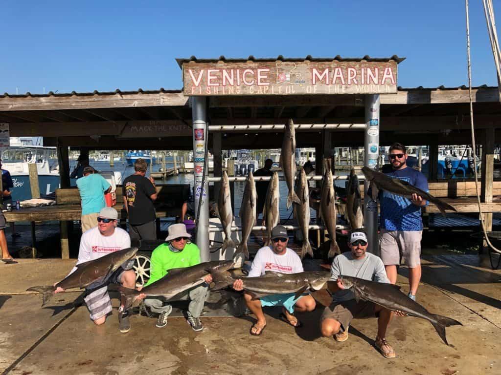 Outdoors360 Crew - Cobia in Venice Louisiana